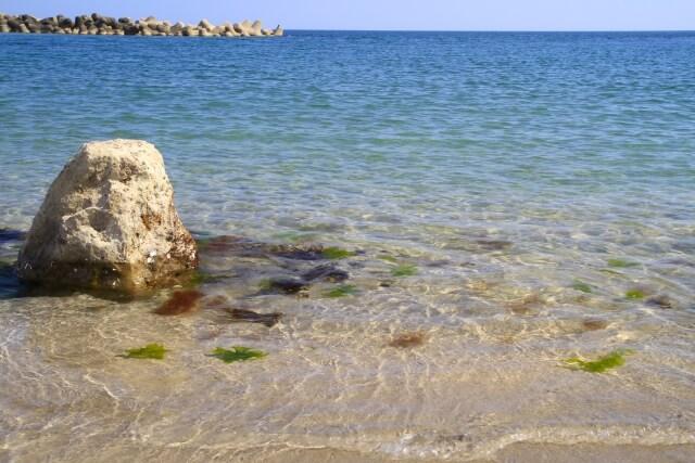 アスタキサンチンは海のカロテノイドと呼ばれている