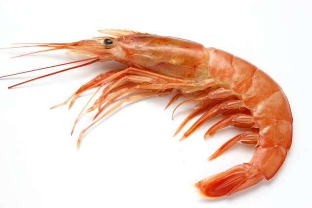 エビやカニなどの甲殻類は加熱することで赤色に変わる