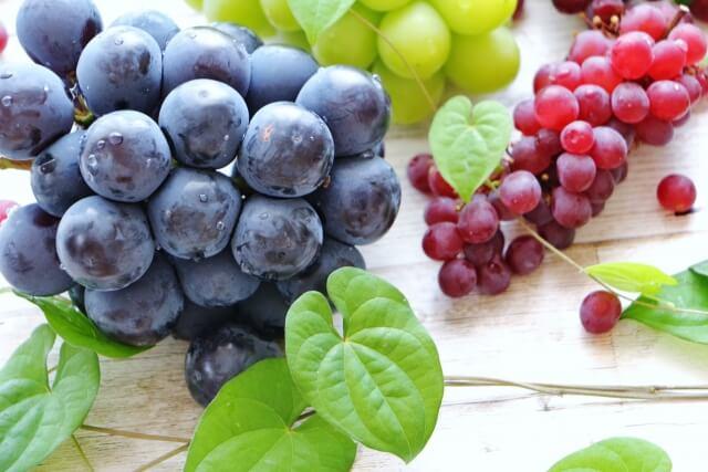 ポリフェノールなどの非栄養素にも健康維持に重要な抗酸化作用がある