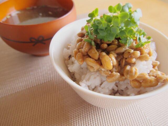 大豆レシチンの安全性は高く大きな副作用の心配はない