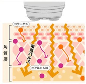フェイスポンププレミアムの低周波数の電流が肌に流れる